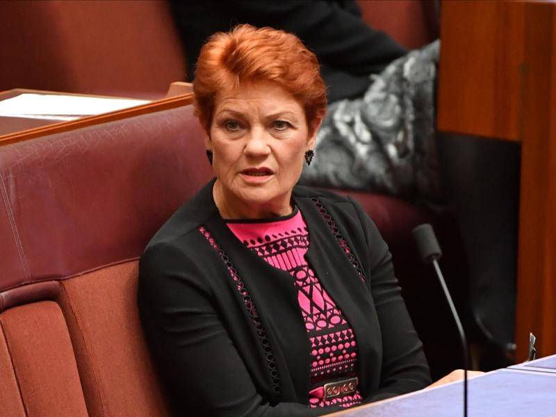 Pauline Hanson's self-titled website has been redirected to the Refugee Council of Australia.